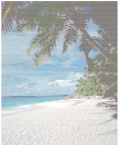 beachascci
