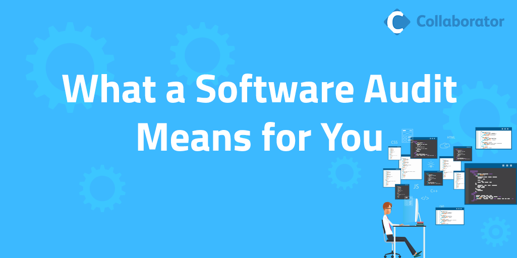 What a Software Audit Means for You