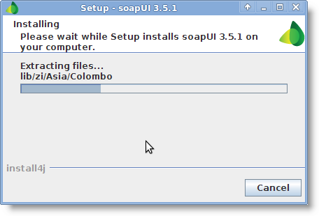 lin-soapui-installing