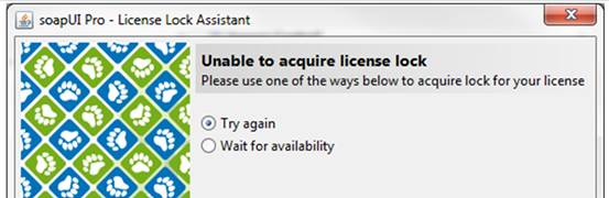 Unable to acquire a license lock
