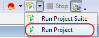 Running the Project