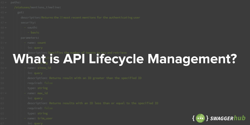 What is API Lifecycle Management?
